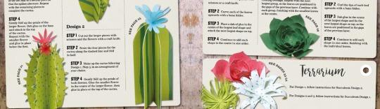 Sarah Dennis Paper Plants News Feature Image
