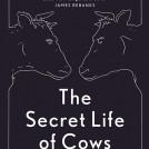 Anna Koska Secret Life of Cows News Item Book Jacket