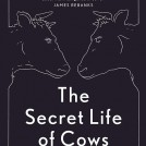 Anna Koska Secret Life of Cows News Item Book Jacket